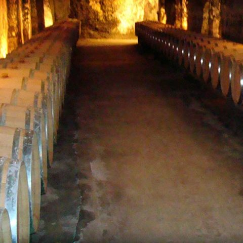 The wonderful wines of the Rhone. Visit Chateauneuf du Pape for world class wines or Tavel for the best rosé in France, both within 20 minutes drive!